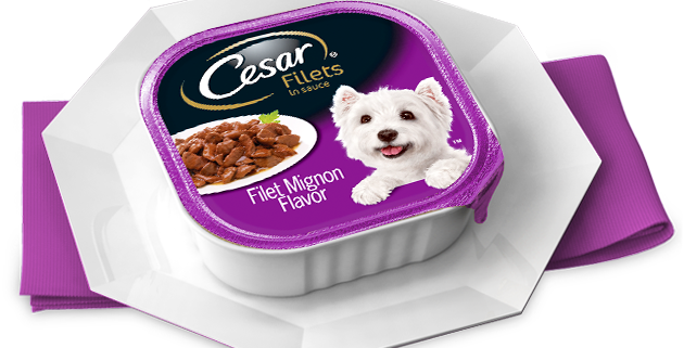 Cesar Dog Food Recall